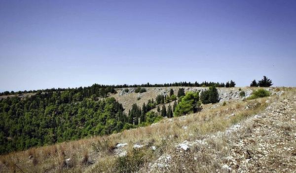 Pulicchio di Gravina, near Gravina in Puglia (Bari Province - Apulia)