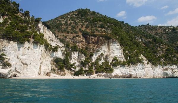 The cliffed rocky coast near Mattinata (Gargano National Park, Foggia Province - Apulia)